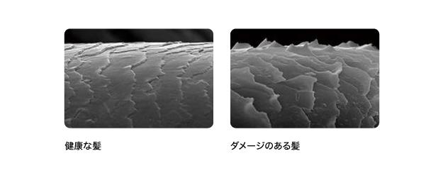 【ドライヤー】熱と物理的ダメージのダブルパンチ 写真