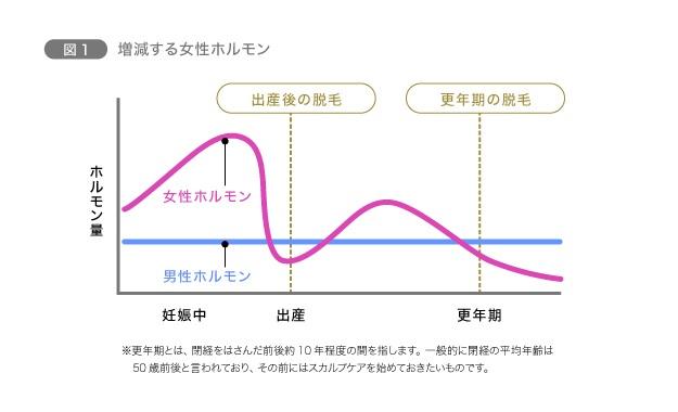 【加齢による変化】女性ホルモンが大きく影響 図1