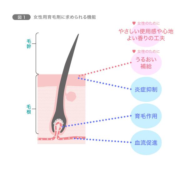 【育毛のコツ5】女性用育毛剤を使ってみよう 図